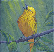 Fran Brooks - Yellow Warbler