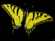 Butterfly Digital Art - Yellow Wing by KWC Art