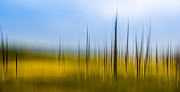 Christopher L Nelson - Yellowstone Abstract
