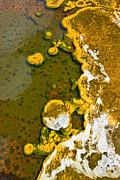 Jamie Pham - Yellowstone Abstract