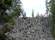 Yellowstone Photos Prints - Yellowstone Basalt Lava Columnar Joints Print by Barbara Dalton