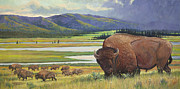 Animals Mixed Media Originals - Yellowstone Bison by Rob Corsetti