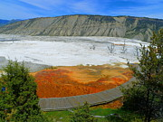 Yellowstone Mixed Media - Yellowstone Colored by Nature - Mammoth Hot Springs by Photography Moments - Sandi