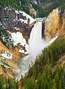 Jamie Pham Metal Prints - Yellowstone Falls in Spring Time Metal Print by Jamie Pham