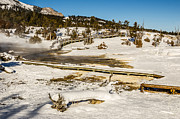 Sue Smith Prints - Yellowstone Hot Spring Print by Sue Smith