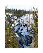 Snowy Mountain Photos - Yellowstone icy river by Jack Pumphrey
