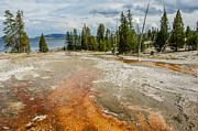 Sue Smith - Yellowstone Lake from...