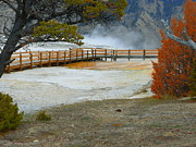 National Mixed Media Prints - Yellowstone National Park - Mammoth Hot Springs Print by Photography Moments - Sandi