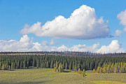 Yellowstone Park Prints - Yellowstone National Park Scenic View Print by Jennie Marie Schell