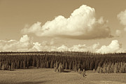 Yellowstone Park Prints - Yellowstone National Park Scenic View Sepia Print by Jennie Marie Schell
