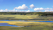 Yellowstone Park Prints - Yellowstone River Valley Print by Jennie Marie Schell