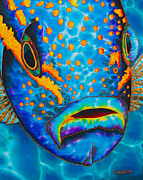 Sports Tapestries - Textiles Prints - Yellowtail Snapper Print by Daniel Jean-Baptiste