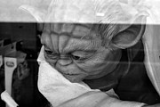 Star Wars Photo Originals - Yoda In The Thrift Shop by Carrie Cooper