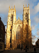 York Minster Print by Neil Finnemore