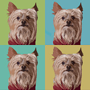 Yorkshire Terrier Art Framed Prints - Yorkie Times Four Framed Print by Susan Stone