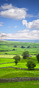 North Yorkshire Prints - Yorkshire Dales Wensleydale England Print by Colin and Linda McKie
