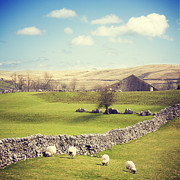 Early Photo Prints - Yorkshire Dales with Dry Stone Wall Print by Colin and Linda McKie