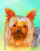 Yorkshire Terrier Painting Print by Iain McDonald
