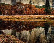 Terry Garvin Prints - Yosemite Reflections Print by Terry Garvin
