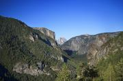 Cathedral Rock Photos - Yosemite Scenic by Charmian Vistaunet