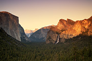 Fir Trees Posters - Yosemite Valley Sunset Poster by Jane Rix