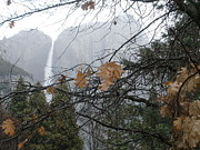 Jesse Flaherty - Yosemite Waterfall