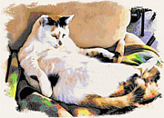 You Move The Stuff From The Corrner. I Need My Nap. Print by Phyllis Kaltenbach