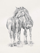 Horses Drawings Prints - You Scratch My Back Ill Scratch Yours Print by Kim Lockman