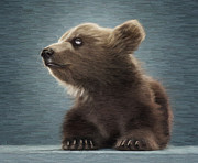 Kodiak Digital Art Prints - Young Brown Bear Print by Aleksey Tugolukov