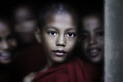 David Longstreath Metal Prints - Young Burmese Monks 1 Metal Print by David Longstreath