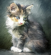 Kitten Digital Art - Young Generation by Yury Malkov