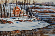 Bill Dinkins - Young Oak in Winter