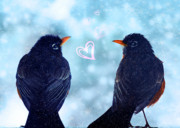 Valentines Day Posters - Young Robins in Love Poster by Lisa Knechtel