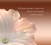 Believe Digital Art - Your Dream Inspirational Quote by F Hughes