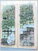 Judy Hall-Folde - Your Garden Wall