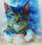 Watercolor Cat Paintings - Youve Got A Friend by Paul Lovering