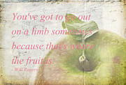 Quote Art - Youve got to go out on a limb by Edward Fielding