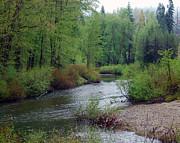 William Havle - Yuba River Old Route 40