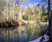 William Havle - Yuba River Reflections