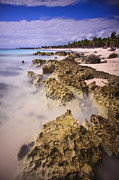 Seashore Metal Prints - Yucatan Coastline Metal Print by Adam Romanowicz
