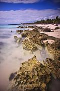 Adam Romanowicz - Yucatan Coastline