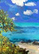 Dilip Sheth - Yucatan