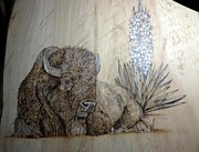 Wood Burning Pyrography Prints - Yucca Buffalo Print by Cindy Jo Burleson