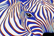 Harem Metal Prints - Zebra 2 Metal Print by Jack Zulli