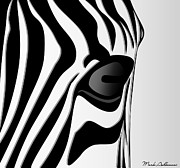 Wild Animals Digital Art Metal Prints - Zebra 3 Metal Print by Mark Ashkenazi