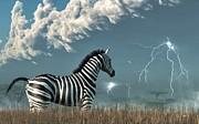 Daniel Eskridge - Zebra and Approaching Storm