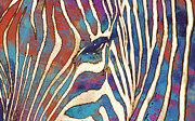 Zebra Mixed Media - Zebra art - 1 stylised drawing art poster by Kim Wang