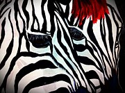 Zebra Paintings - Zebra Couple by Saundra Myles