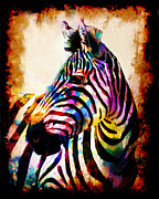 Mark Compton - Zebra In Color