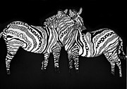 Zebra Love 1 Print by Karen Larter